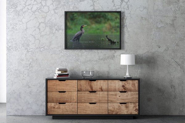 wydruk-kormoran