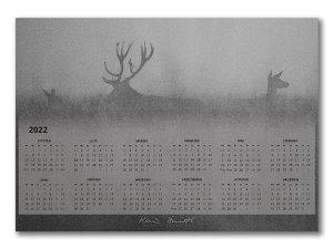 Kalendarz 2022 Rykowisko, Puszcza Niepołomicka
