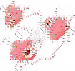 20120204-154956.jpg