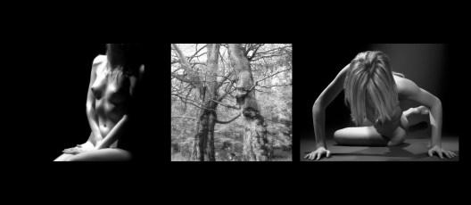 """Abbraccio Images tagged """"pellicola"""""""