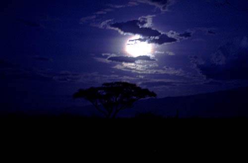 https://i1.wp.com/www.marcosanti.it/Reportage/Africa_ph/Tanzania/Tanzania_notte_g.jpg
