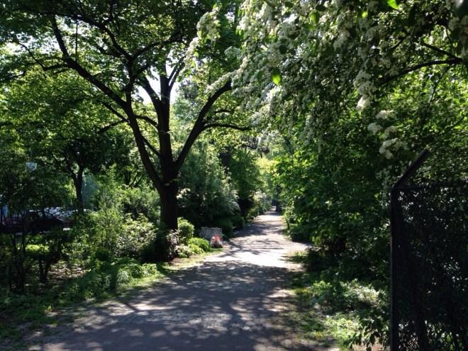 Wunderschoene Baume, Sommerwiese und Spielplatz inklusive Tischtennisplattten - der Wildenbruchpark