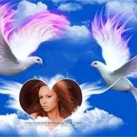 Marco de fotos de palomas blancas y corazón