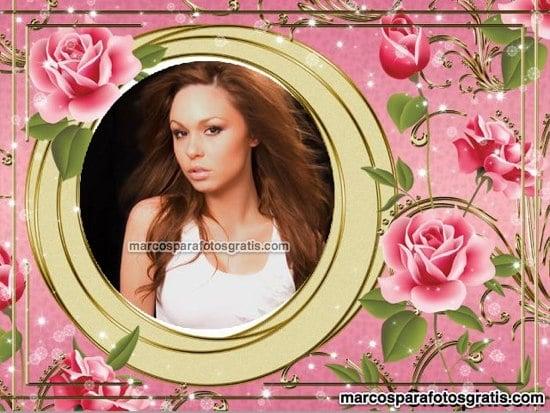 marcos de flores rosas
