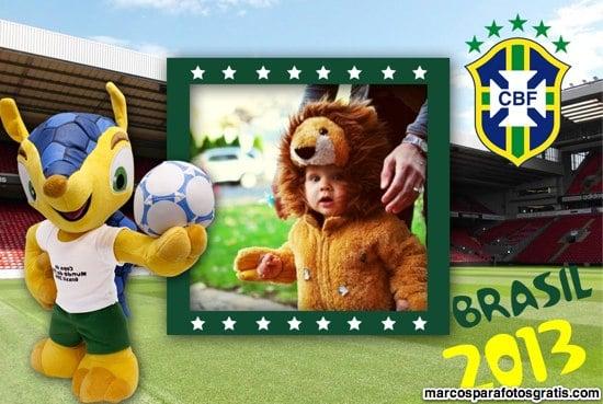 marcos de fotos mascota brasil 2014