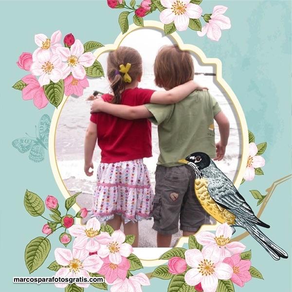 marcos fotos pajaros flores