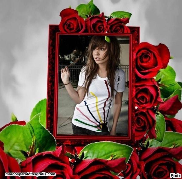 marco rosa roja