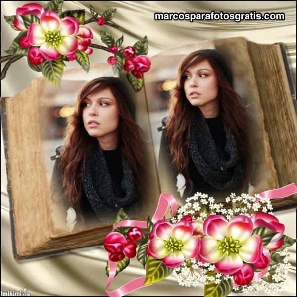 bordes con flores para fotos
