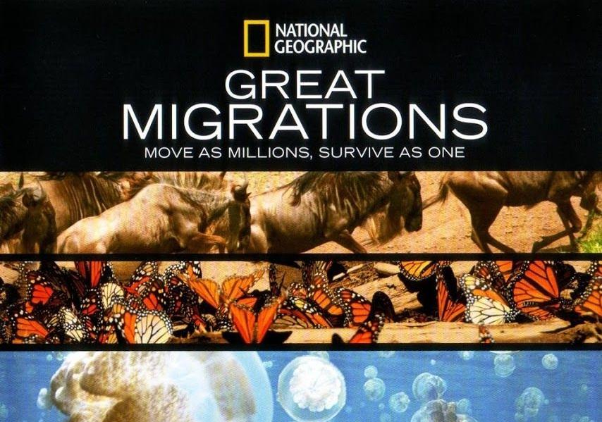 Disney+ Grandes migraciones