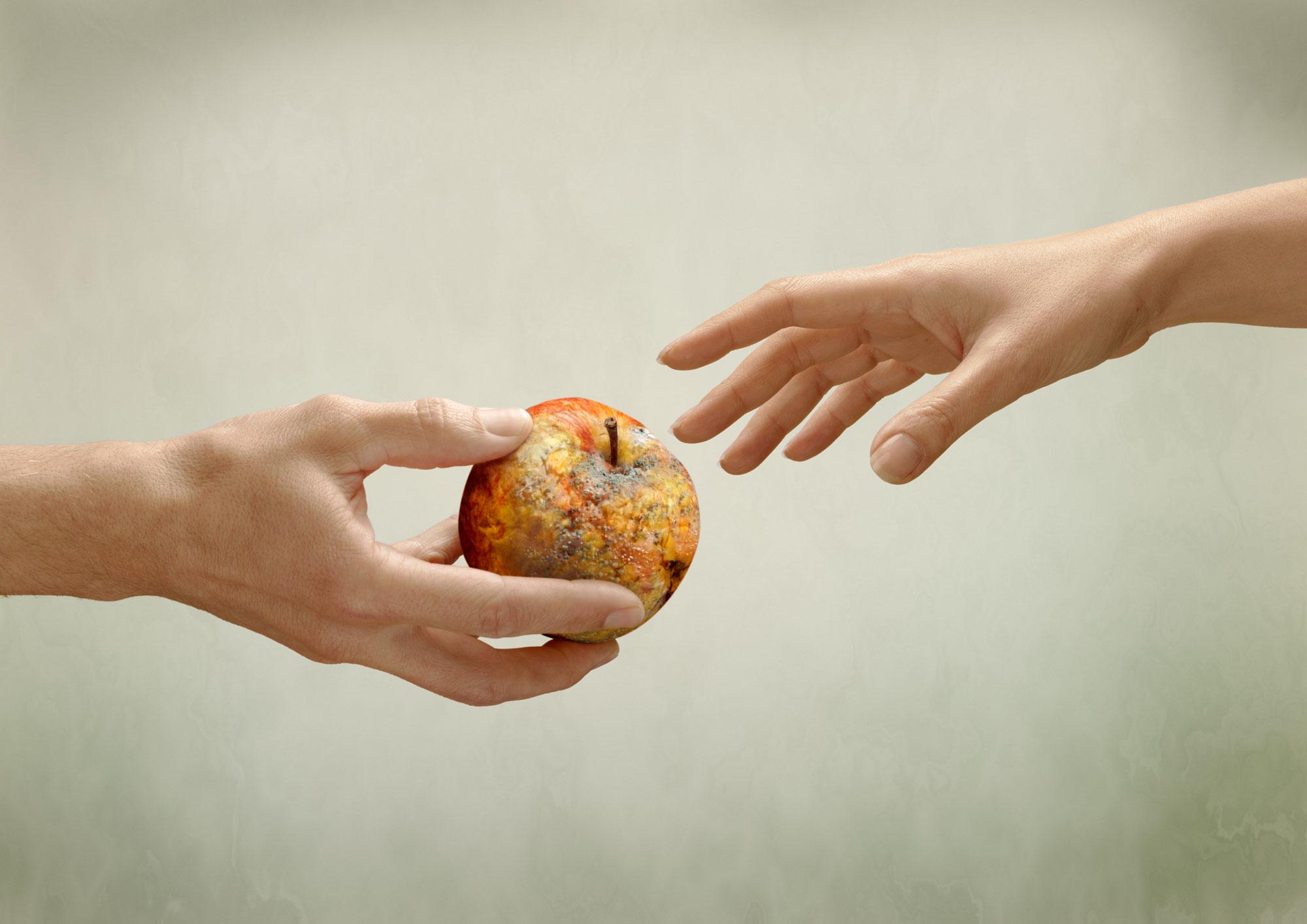 Hands; rotten; apple; michelangelo; sistine; chapel; aids; foundation; studio; amsterdam; the netherlands; handen; verotte; appel; sixtijnse kapel; aids fonds