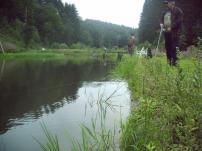 PICT2008_1
