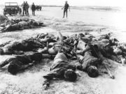 NLF/NVA killed by U.S. air force personnel during an attack on the perimeter of Tan Son Nhut Air Base during the Tet Offensive