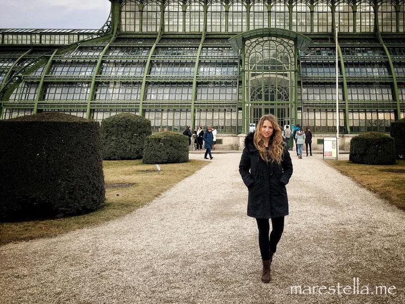 Palmenhaus_marestella (1 von 17)