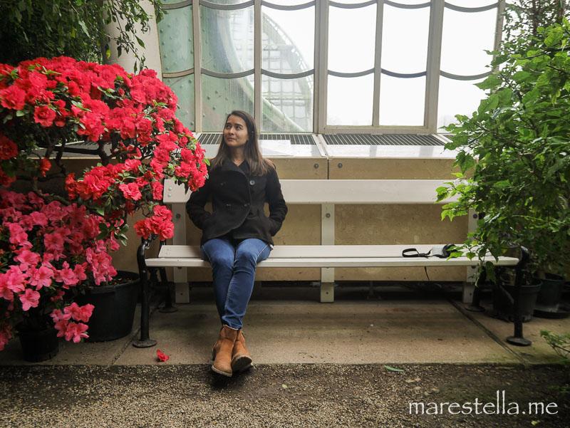 Palmenhaus_marestella (3 von 20)