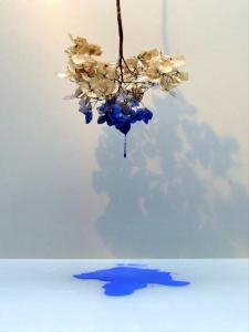 Hortensia drupt blauw