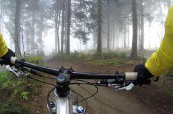 Best Mountain Biking Margaret River