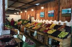 The Shed Markets stall