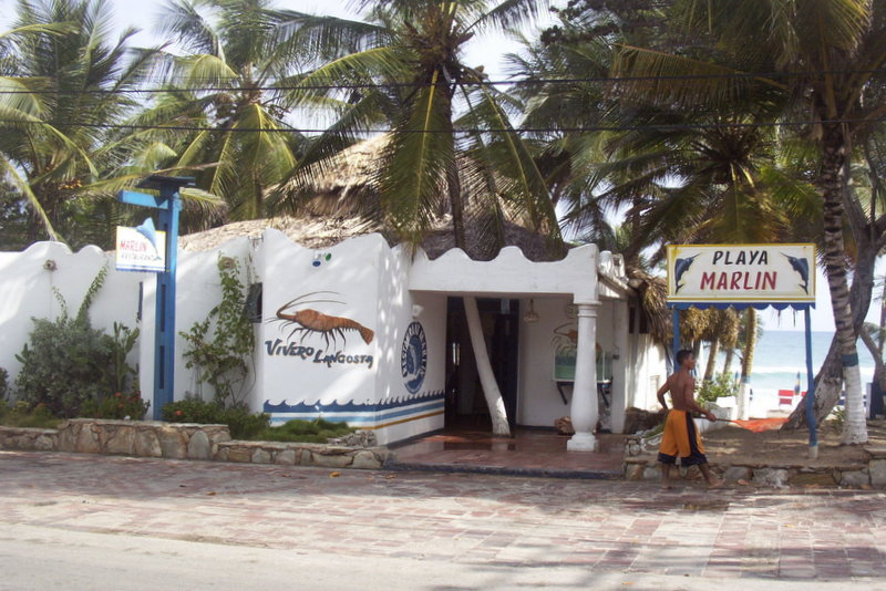 Margarita Island Restaurants