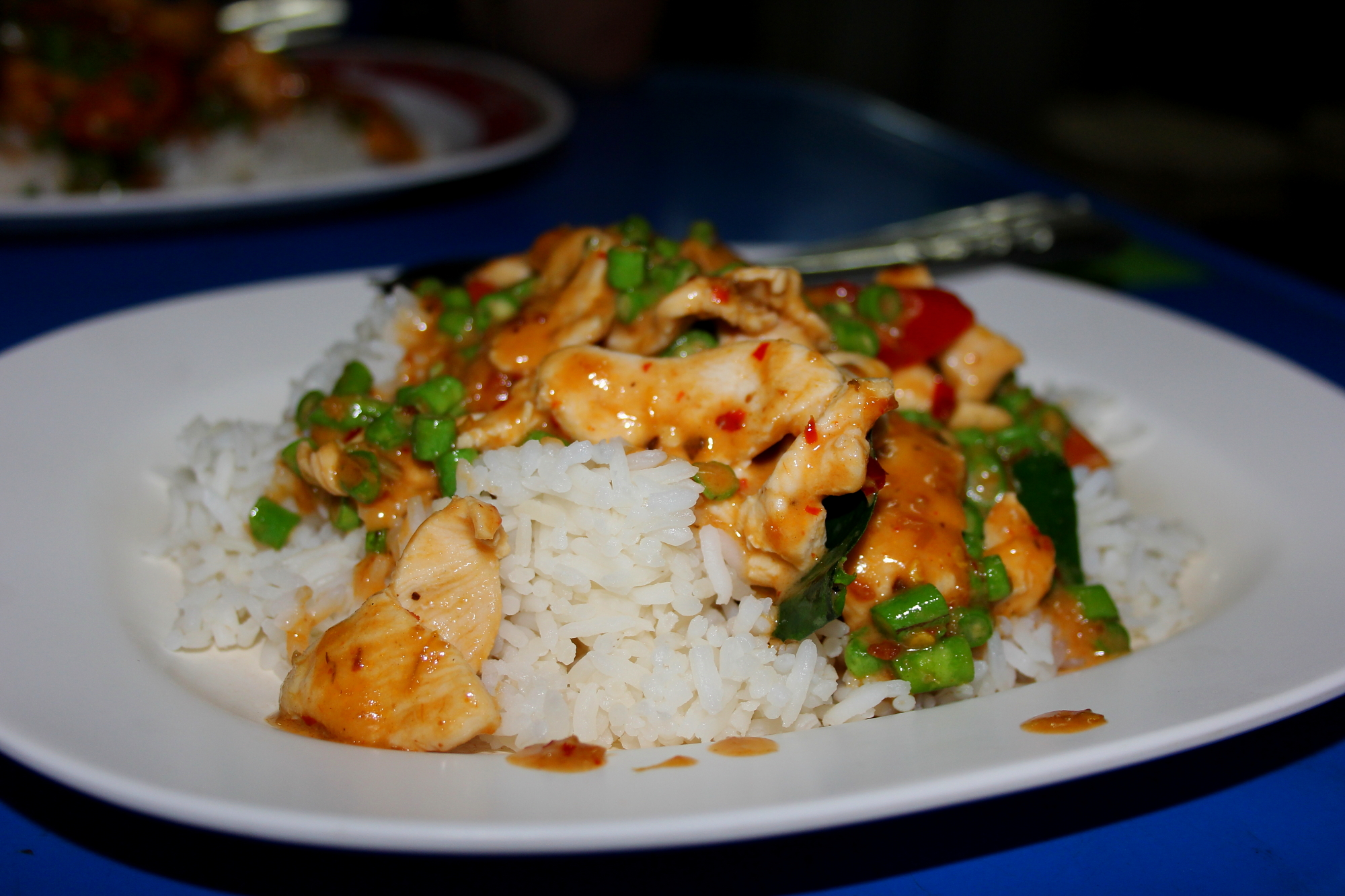 Panang Curry at Barnakarn Kitchen in Chiang Mai, Thailand