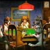 dogspoker
