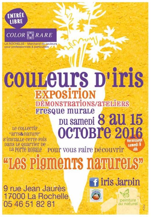 Iris Jardin Les Couleurs Diris Marguerite La Rochelaise