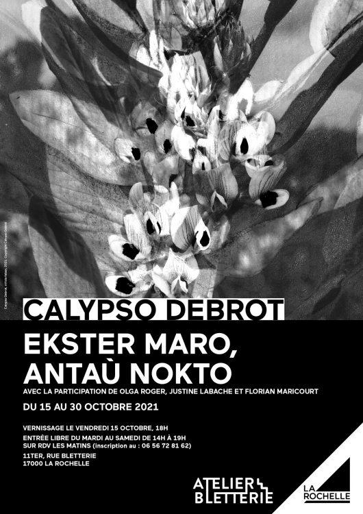 Exposition Calypso Debrot Atelier Bletterie La Rochelle