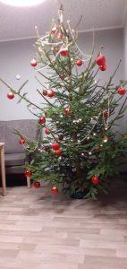 Weihnachtsbaum von Gegenüber