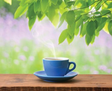 Green Tea, A Friend for Your Health