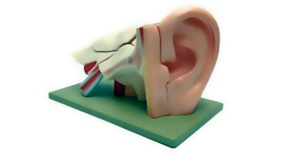 8 Factors that can Lead to Eardrum Rupture