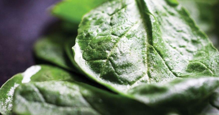 leafy greens for good circulation