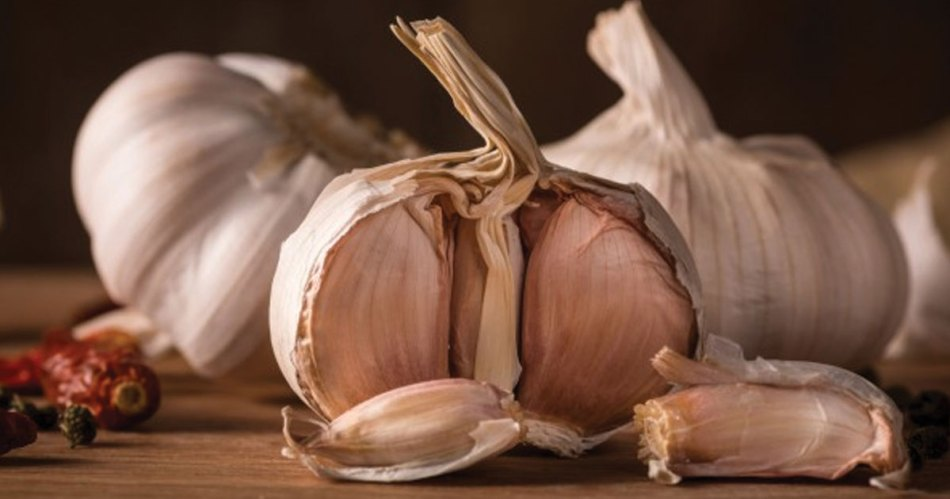 garlic for healing