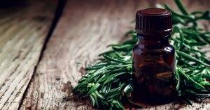 Tea Tree Oil Uses and Benefits