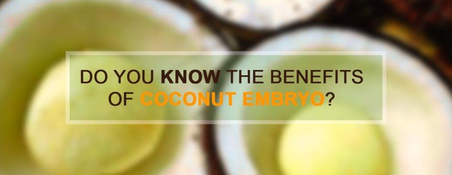 Amazing Health Benefits of Coconut Embryo