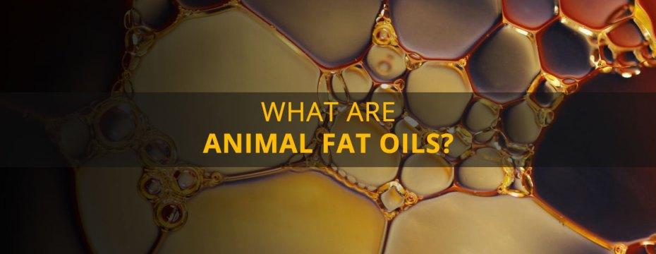 12 Health Hazards of Consuming Animal Fat Oils