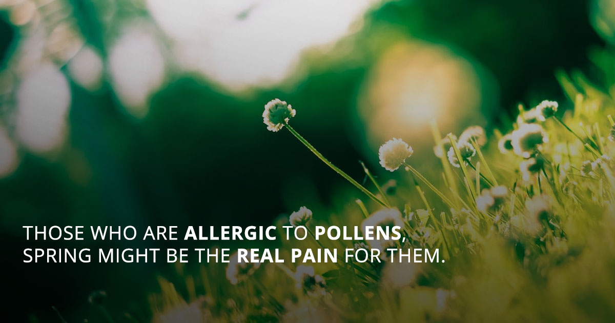 Most Common Spring Allergies and their Treatment