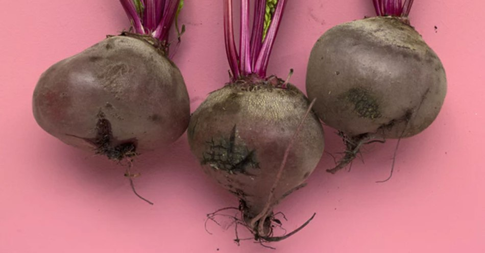 beet root juice for low bp
