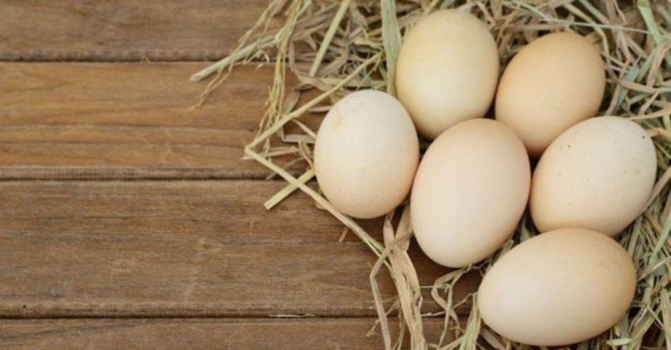 eggs for healthy bones