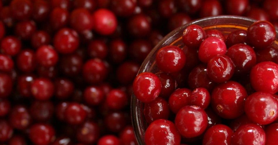 crane berry for UTi