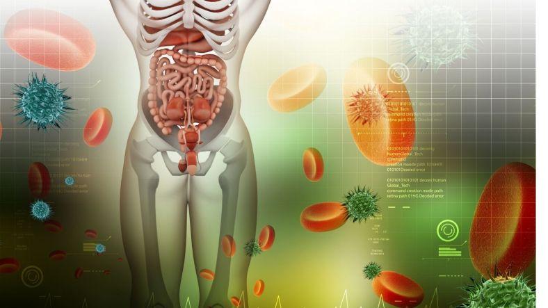 elaichi benefits for digestion