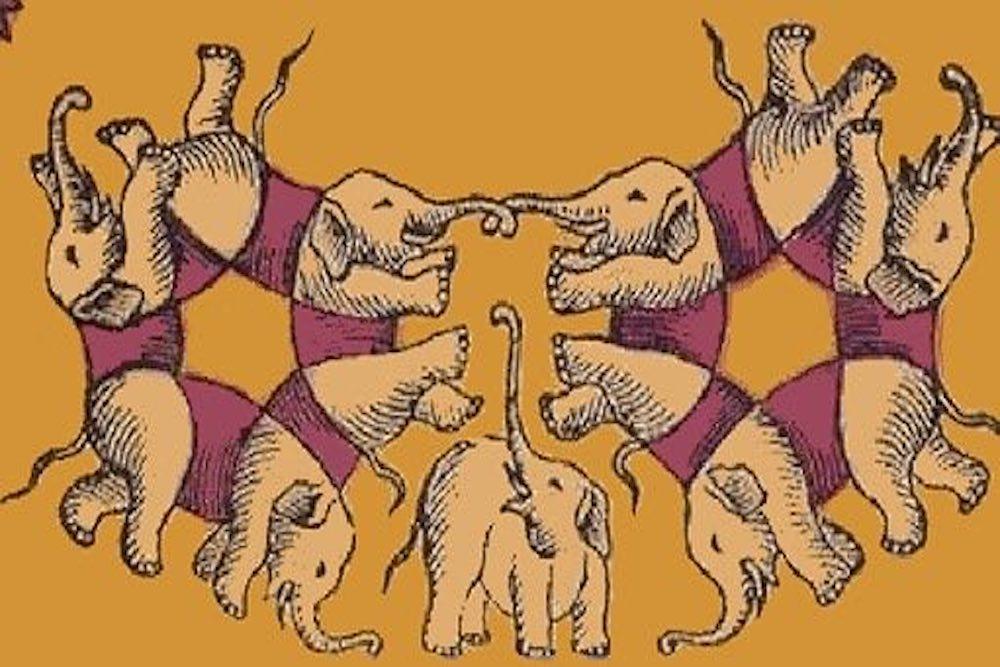 elefanti illusione ottica