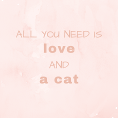 Wallpaper_All you need is love and a cat