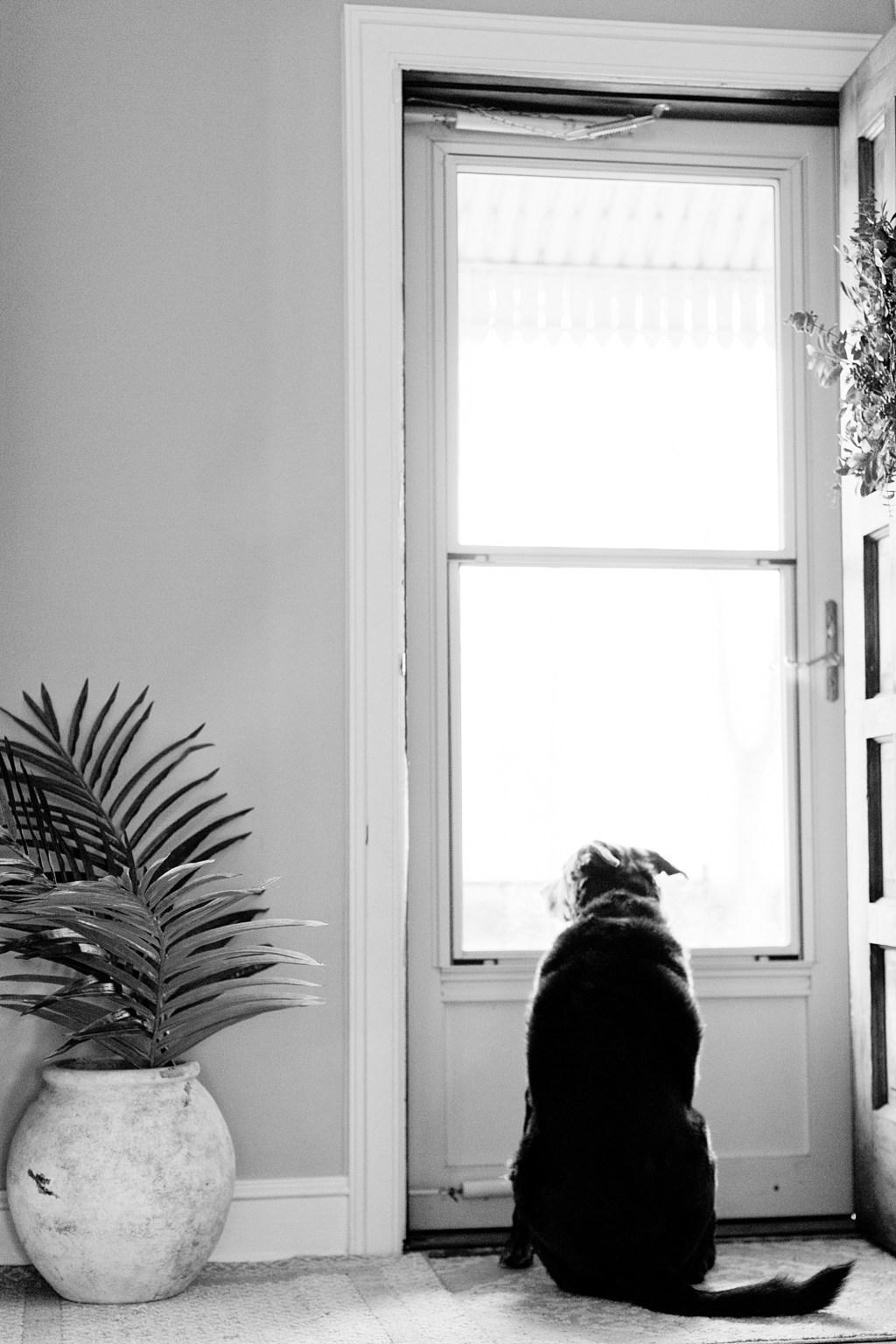 Cozy Home_0019.jpg