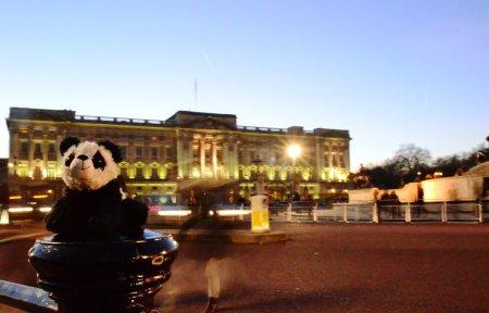 Benji at Buckingham Palace