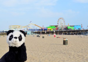This was a lovely view of the Santa Monica Pier, until Benji thought I was taking a picture of him again. I guess I'll just have to get used to this.