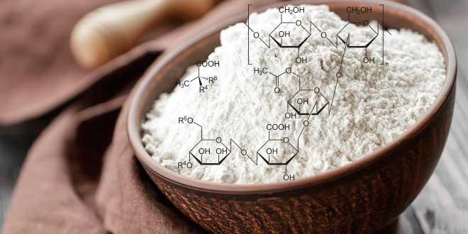 Goma_Xantana_Bioproductos_Biotecnologia_Maria_Iranzo_Biotec