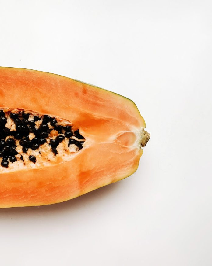 Papaya_Transgenica_BioProductos_Maria_Iranzo_Biotecnologia