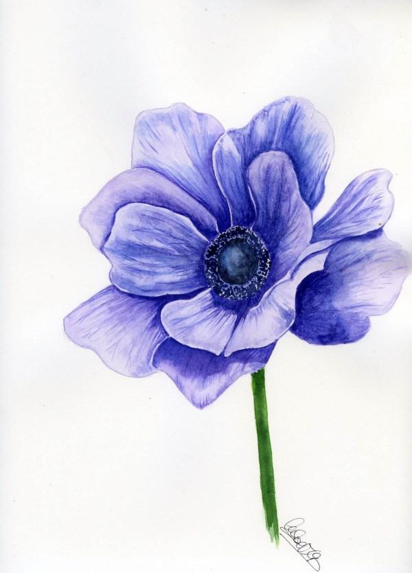 Anémona azul 23×35 cm 150€