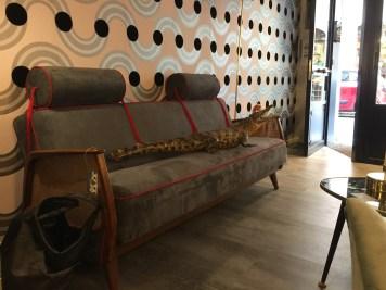 Un divano in stile Oriente e il coccodrillo di Giano del Bufalo