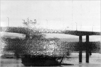 Carbon Bridge