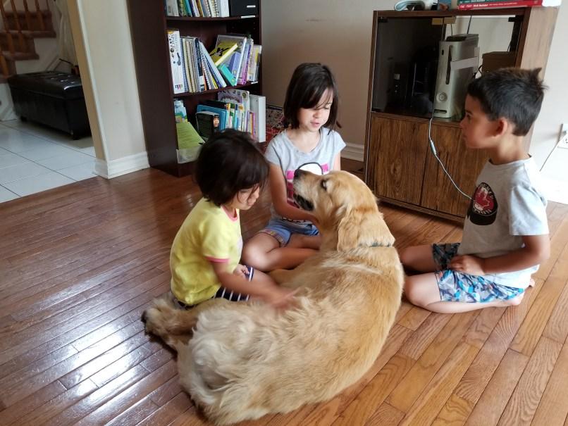 Three children petting a golden retriever dog: pet sitting side hustles